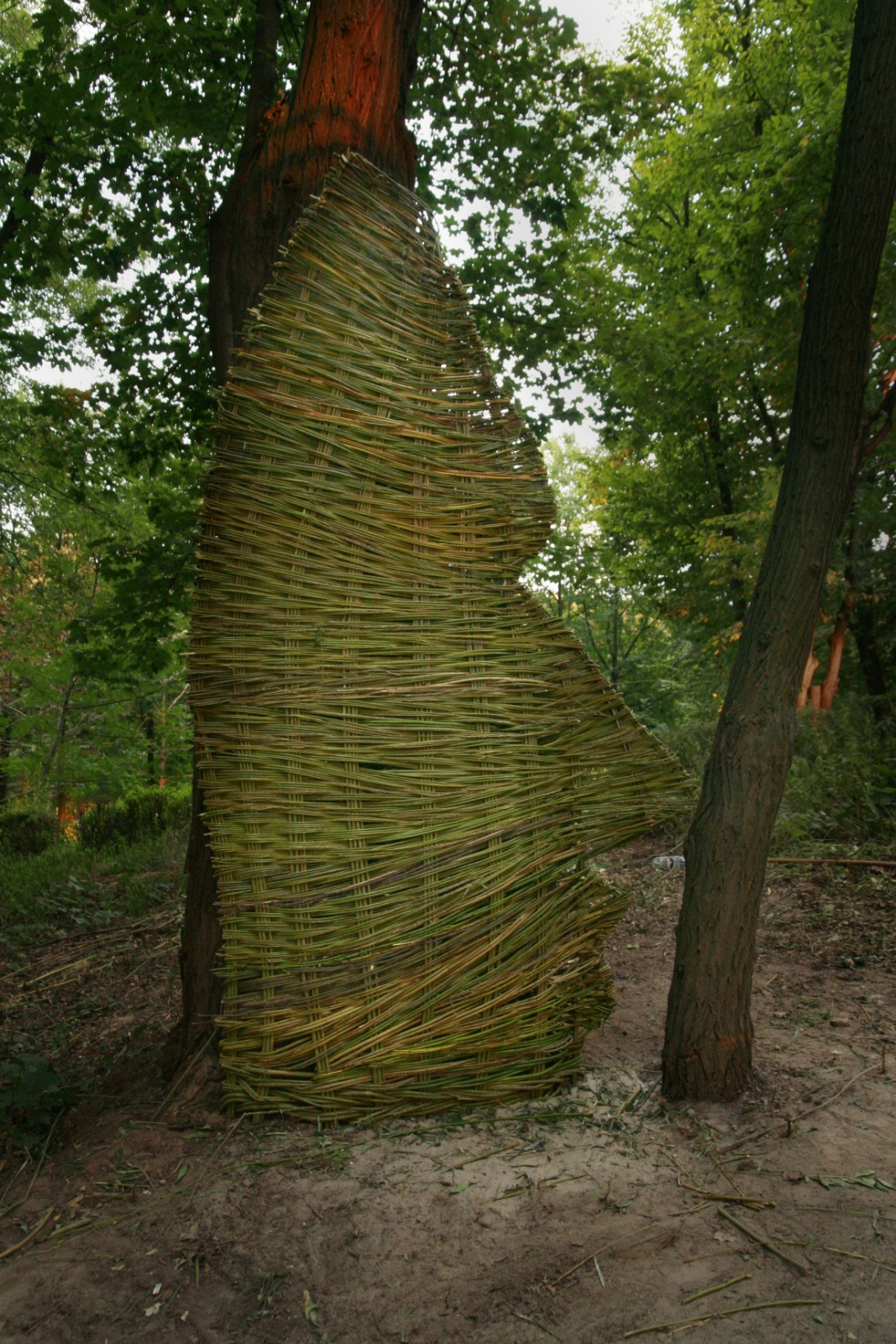Facing, Wicker, 2007, Botanic Gardens, Kiev, Ukraine