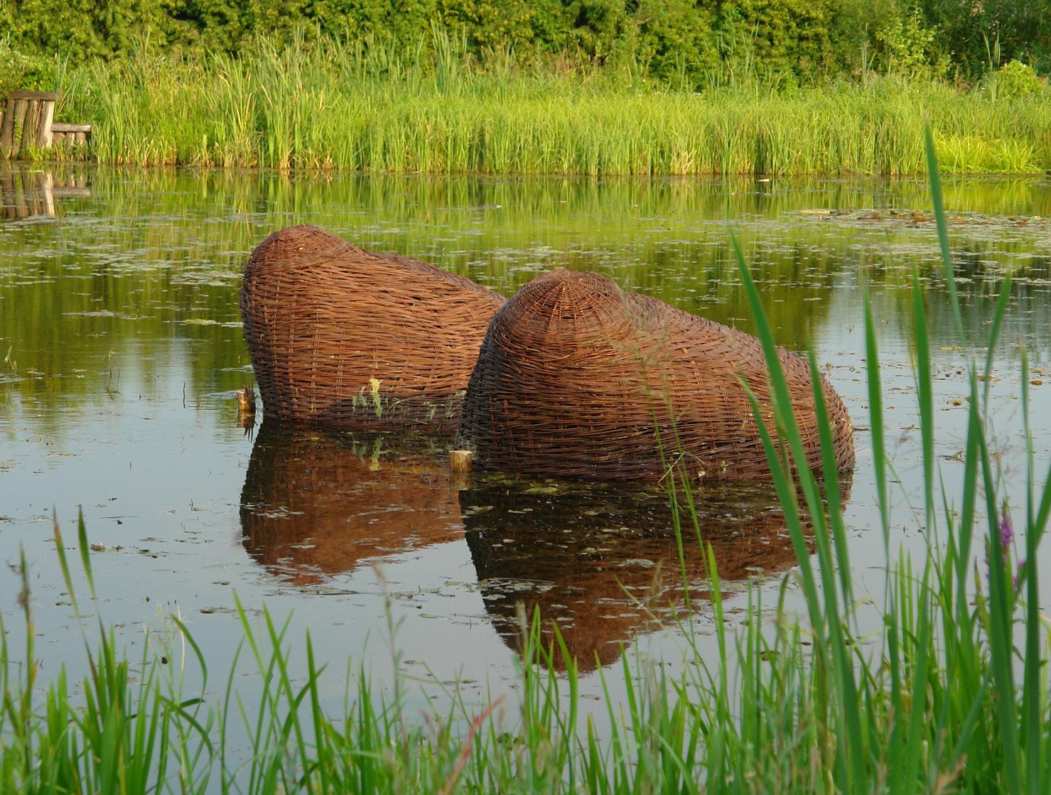 Piersi, 2006, Wicker, Bolestraszyce, Poland