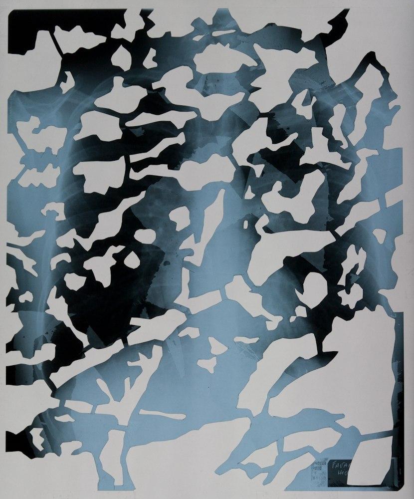 Frontière interne I (série), découpage des radiographies de poumons, 9 images 43cm x 35,5 cm