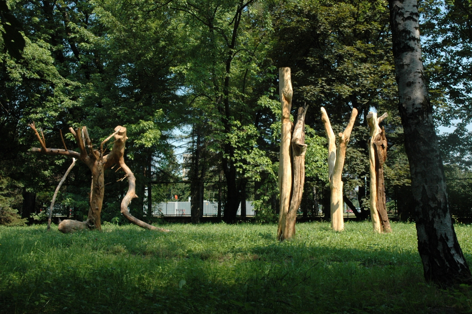 Nature's Body, 2006, dimensions variable (height 3.5 meters), Apple Wood, Botanic Gardens, Krakow, Poland
